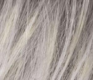 Silver Blonde Wig Colour Ellen Wille