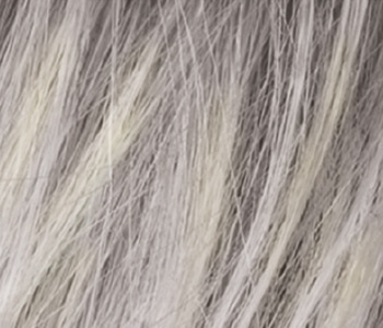 Silver Blonde Colour Ellen Wille Hair Power