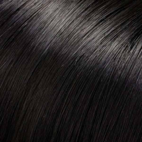1 | Black Jon Renau Wig Colour