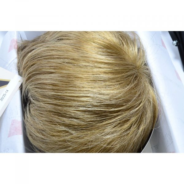 20/25-14 Wig Colour by Gisela Mayer
