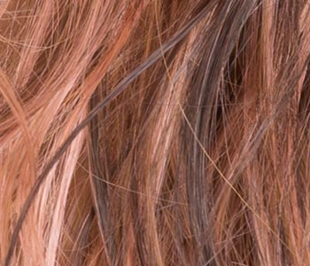 Rosewood Wig Colour by Ellen Wille