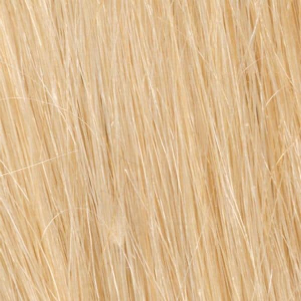 R9HH Light Golden Blonde | Human Hair Wig Colour by Raquel Welch