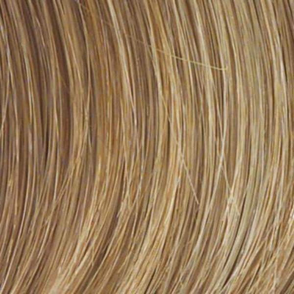 SS14/25 BLACK LABEL Human Hair Colour by Raquel Welch
