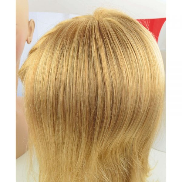 25R/27 Wig Colour by Gisela Mayer