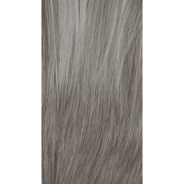 Silver Frost Wig Colour | Orchid Collection by Rene of Paris
