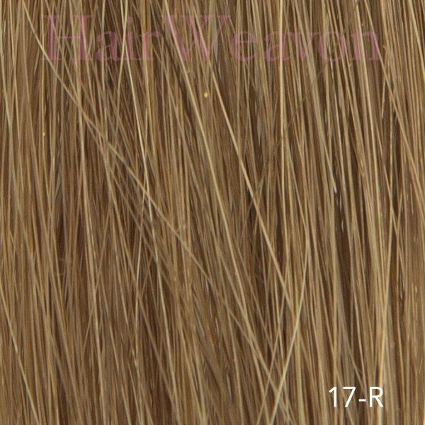 mens hair system colour 17 R